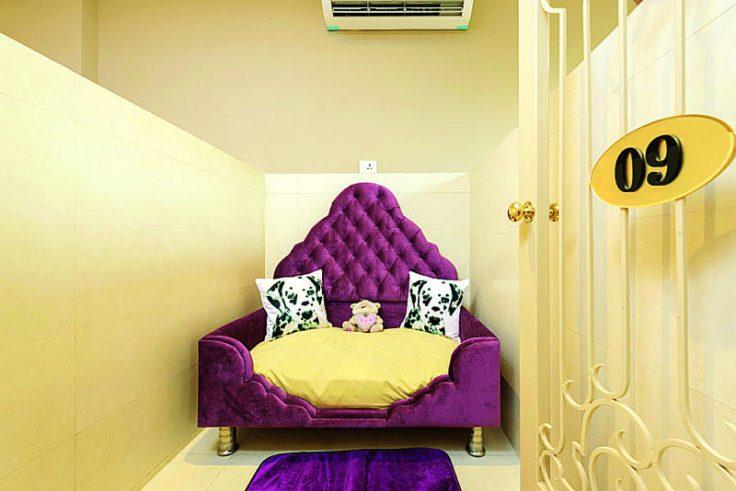 room-800x534